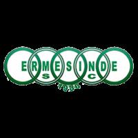 logo_ermesinde